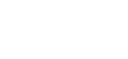 REBEL FLAG Series